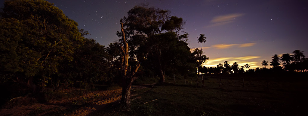 IMAGE: http://stemm.smugmug.com/Landscapes/Landscapes/i-c9pm4cN/0/XL/Dead%20Tree%20and%20Moon-XL.jpg